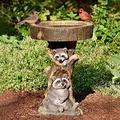 Sruiluo Outdoor Bird Bath Bowl, Feeder,Resin Pedestal Fountain Decoration for Yard, Garden w/Planter Base, Wonderful Garden Decor (Raccoon)