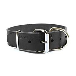 dean and tyler b and b, basic leather dog collar with strong nickel hardware - black - size 22-inch by 2-inch - fits neck 20-inch to 24-inch