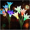 Solar Flower Lights Outdoor?2020 New Upgraded?Multi-Colors Changing LED Decorative Lights,Outdoor Solar Garden Stake Lily Lights,Solar Powered Lights for Garden(2 Pack,White&Blue)