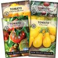 Sow Right Seeds - Colorful Tomato Seed Collection for Planting - Bi-Color Cherry, Jubliee, Black Cherry, and Striped Paste Tomatoes. Non-GMO Heirloom Varieties to Plant Home Vegetable Garden
