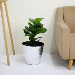 """Efavormart 11"""" Polypropylene Planter Pot Indoor, Flower Pot For Plants With Metallic Hammered Design"""