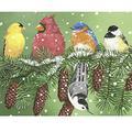 300 Piece Puzzle Bird Puzzle for Kids Adults Winter Snow Cardinal Nuthatch Chickadee Bluebird Yellow Finch Jigsaw Puzzle Unique Audubon Backyard Bird Puzzle Gift for Bird Lovers and Puzzle Lovers