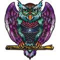 Joukispo Wooden Jigsaw Puzzle - Medium Size Colorful Owl Wooden Puzzles for Adults and Kids(200 Pieces?9.8 ? 11.8 inches), Animal Unique Shaped Jigsaw Puzzle Creative Craft Gift