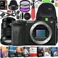 Sony a6600 Mirrorless Camera 4K APS-C Camera Body and E PZ 18-105mm F4 G OSS Power Zoom G Lens ILCE-6600B + SELP18105G Bundle + Deco Gear Travel Backpack Case + Photo Video Software Kit + Accessories