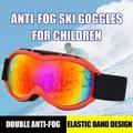 Anti-Fog Ski Goggles Double Layer Ski Goggles Adult Men And Women Ski Goggles