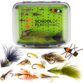 Fly Fishing Flies Assortment Silicone Fly Box Dry, Wet, Nymphs, Streamers, Wooly Buggers, Terrestrials Trout Flies & Bass Flies Hand Tied Flies