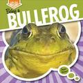 Being a Bullfrog