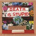 Ordinary Terrible Things: Death is Stupid (Hardcover)