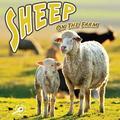 Farm Animals: On the Farm (Library): Sheep on the Farm (Hardcover)