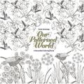 Our Patterned World: A Beautiful Coloring Book (Paperback)