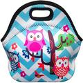 Neoprene Lunch Bag, Insulated Lunch Tote Reusable Cooler Bag for Men Women Kids, Waterproof Lunch Organizer Holder for Work Office School Picnic Travel Outdoor Use,Owl