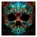 Winnereco 5D DIY Full Drill Diamond Painting Novelty Skull Cross Stitch Embroidery