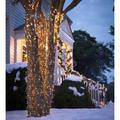 """White LED String Lights with Auto-Timer, 12'10""""L with 48 lights"""
