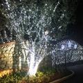 Solar LED String Lights Christmas for Decorations, 54 ft 100 LED Fairy Twinkle Star Lights w/8 Lighting Modes for Bedroom Home Decor, Waterproof String Lights for Garden Home, White, S8295