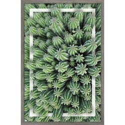 """Trends International Cactus - Group Wall Poster 24.25"""" x 35.75"""" x .75"""" Barnwood Framed Version"""