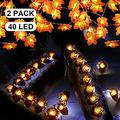 Thanksgiving Decoration Fall Maple Leaf String Lights Acorn LED Lights Total 40 LED 14.4 ft Halloween Christmas String Lights Battery for Holiday Birthday Autumn Garland Decoration