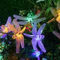 Qisuw 20/30pcs LED Solar Powered Dragonfly Fiber Optic Fairy String Lights IP65 Waterproof Christmas Outdoor Garden Decoration