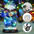 Galaxy Rose Flower Night Light, Colorful Artificial Rose Forever with LED Light String in Glass Dome, Enchanted Best Gifts for Wife Women Wedding Mother's Valentine's Day Anniversary and Birthday