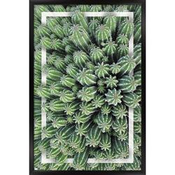 """Trends International Cactus - Group Wall Poster 24.25"""" x 35.75"""" x .75"""" Black Framed Version"""
