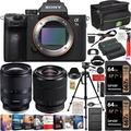 Sony a7III Full Frame Mirrorless Camera ILCE-7M3K/B with 2 Lens Tamron 17-28mm F/2.8 Di III RXD A046 and SEL2870 FE 28-70mm F3.5-5.6 OSS Set + Deco Gear Case Tripod 2 x 64GB Extra Battery Kit Bundle