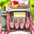 ABS Picnic Backpack - Classic 4 Person Insulated Design - Waterproof Blanket & Full Cutlery Set in Red, Size 7.0 H x 14.0 W x 17.0 D in   Wayfair