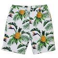 Styles I Love Summer Family Matching Swimwear Men and Boy Pineapple Print Swim Trunks Beach Pool Swim Shorts
