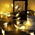 The Party Aisle™ Star String Lights, 33ft 100 Led Star String Lights Plug In in White, Size 7.6 H x 42.0 W x 3.23 D in | Wayfair