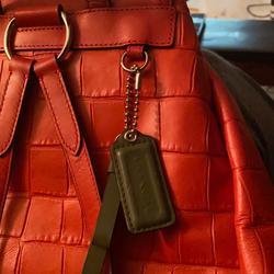 Coach Bags | Coach Alligator Rucksack Backpack | Color: Orange | Size: Os