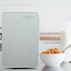 ihometea 20L Portable Small Mini Fridge,Car Refrigerator Mini Cold & Warm Refrigerator in Gray, Size 16.0 H x 11.0 W x 13.0 D in   Wayfair