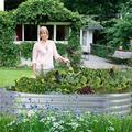 Arlmont & Co. Metal Raised Garden Bed,6-Ft Planter Raised Beds Garden, Galvanized Raised Garden Beds For Vegetables… Metal in Brown | Wayfair