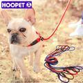 HOOPET Pet Produits D'or Teddy Chien De Traction Corde Chaîne Grand Collier de Chien P Chien Laisse