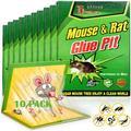 Piège à colle à souris, 10 pièces, haute efficacité, rongeur, attrapeur de insectes, lutte