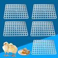 Prep & Savour 5Pcs 88 Egg Incubator Tray Chicken Duck Tray Egg Hatcher Storage Container Plastic in Black/Blue/Brown | Wayfair