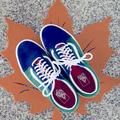 Vans Shoes | Gently Used Vans Mens Size 8.5 Shoes | Color: Blue/Green | Size: 8.5