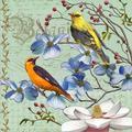 Red Barrel Studio® Oriole Bird Botanical By Art Licensing Studio, Framed Wall Art in Brown/Pink, Size 17.5 H x 17.5 W x 1.5 D in   Wayfair