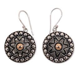 Sterling silver dangle earrings, 'Shields'