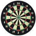 Accudart Starlite Dartboard in Black, Size 18.0 H x 18.0 W x 1.25 D in | Wayfair D4001