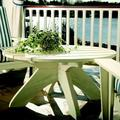 Uwharrie Chair Chat Wood Coffee Table Wood in White, Size 19.75 H x 42.0 W x 42.0 D in | Wayfair 9092-013-Distressed
