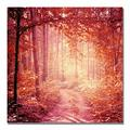 """Trademark Fine Art """"Enchanted Forest"""" by Beata Czyzowska Young Photographic Print on Wrapped CanvasCanvas & Fabric in Brown/Green/Red   Wayfair"""