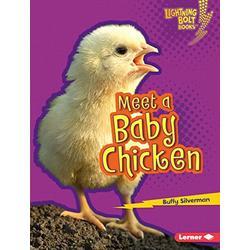 Meet a Baby Chicken (Lightning Bolt Books (R) -- Baby Farm Animals)