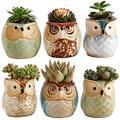 Sun-E 2.5 Inch Owl Pot Ceramic Flowing Glaze Base Serial Set Succulent Plant Pot Cactus Plant Pot Flower Pot Container Planter Bonsai Pots with A Hole Gift Idea 6 in Set