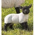 Plow & Hearth 54050 Standing Lamb Suffolk Sheep Resin Garden Stat