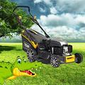 Texas Tondeuse à essence Premium 4850tr/WE, 48 cm de largeur de coupe