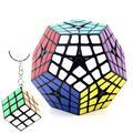 shengshou megaminx 4x4 Cube Professionnel Dodécaèdre 3D Puzzles Noir Shengshou   Dingze (Noir)