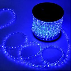 PYSICAL 110V 2-Wire Waterproof LED Rope Light Kit for Background Lighting,Decorative Lighting,Outdoor Decorative Lighting,Christmas Lighting,Trees,Bridges and Eaves (100FT, Blue)