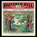 "Buyenlarge ""The Buffalo Bill Stories: Buffalo Bill's Camp Fires Paper Poster, 18"" x 27"""