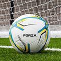 FORZA Soccer Balls - Huge Range of Match, Backyard, Training, Astro and Futsal Balls [Net World Sports] (FORZA Pro Training Fusion Soccer Ball [2018], Size 5 (Senior))