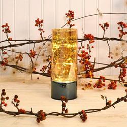 "LumaBase Glass LED 15-Light Lantern Fairy String Light, Size 3.12"" L | Wayfair 95701"