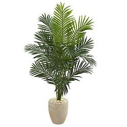Nearly Natural 5.5' Paradise Palm Tree in Sand Colored Planter Artificial Plant, Green