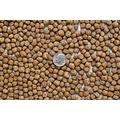 Americas' Best Koi Food 50 lbs Fish Food Large 1/4 Inch Floating Pond Pellets for Koi Goldfish and Pond Fish - 32% Protein - Net Weight: 50 lbs (22.8 kg)